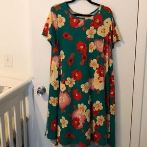 LuLaRoe Size L Carly Green with beautiful flowers!
